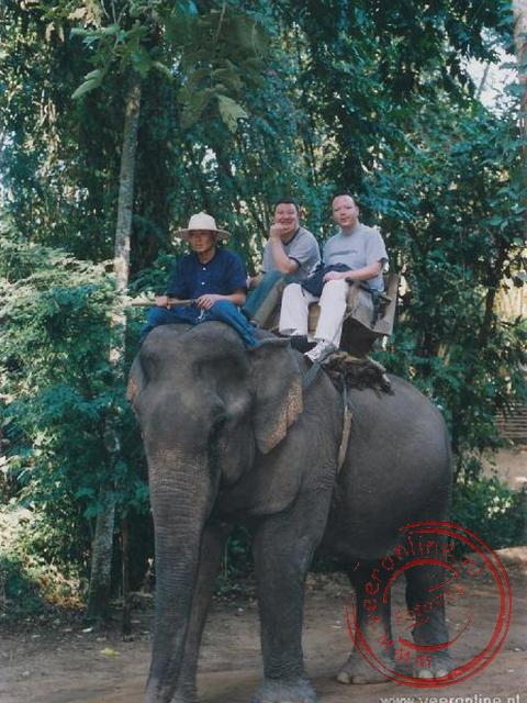 Geert en Ronald op de olifant