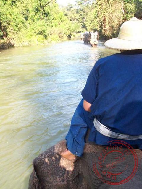 De terugweg ging door de rivier