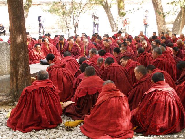 Mediterende monniken in het Sera Klooster