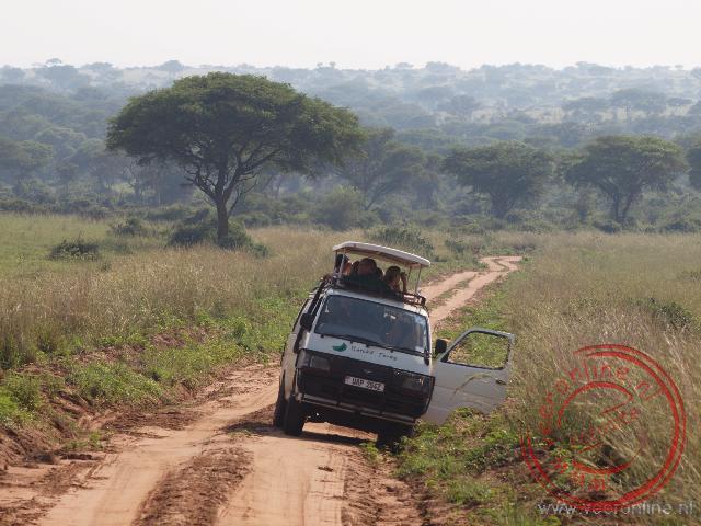 Vanuit de busjes wordt het wild gespot in Murchison Falls National Park