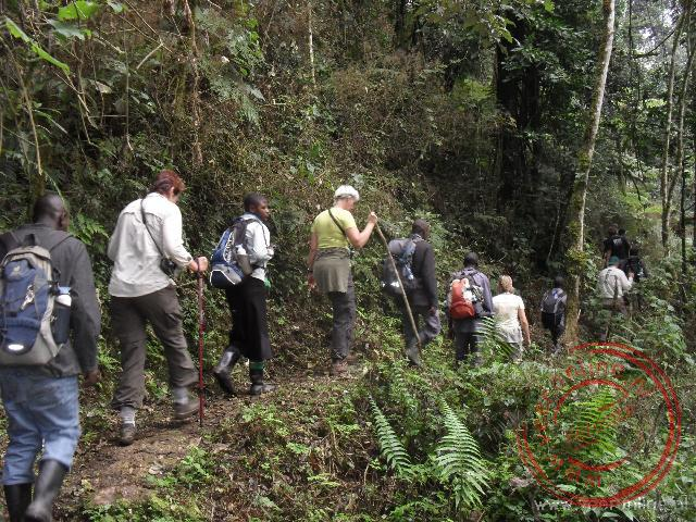 Op weg naar de gorilla's in Bwindi