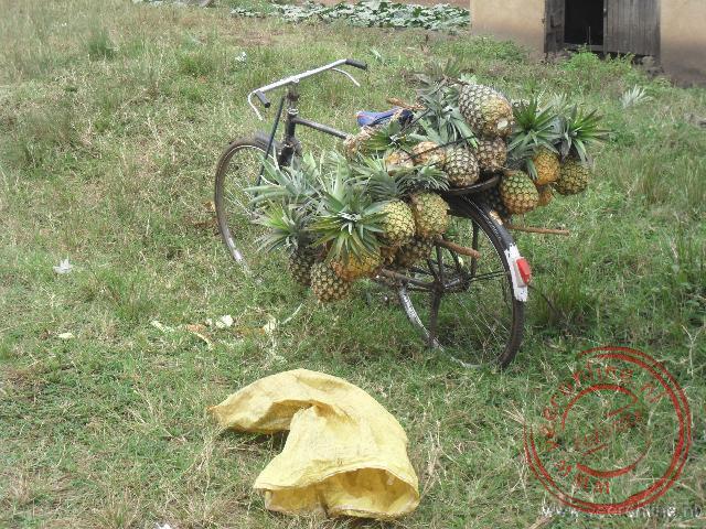 Een verkoper van ananas