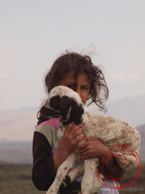 Een meisje toont haar lievelingsschaapje