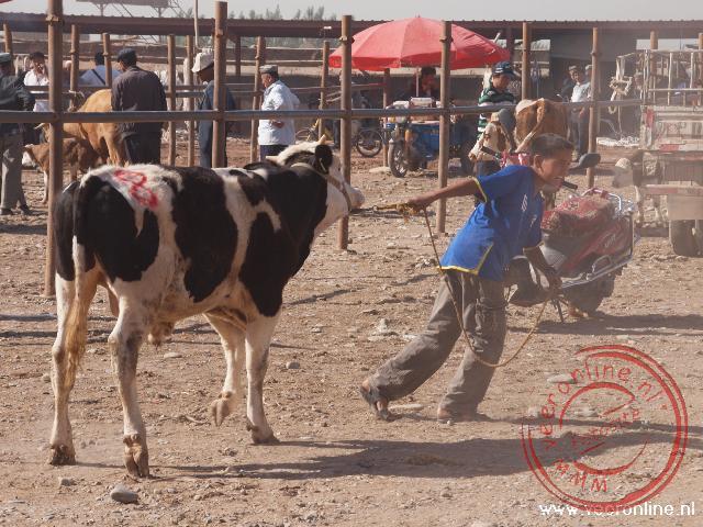 De zondags veemarkt van Kashgar