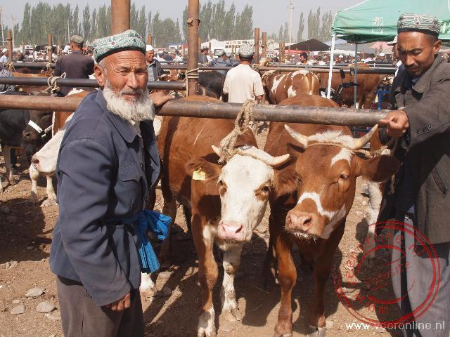 Net buiten het centrum van kashgar wordt de veemarkt gehouden