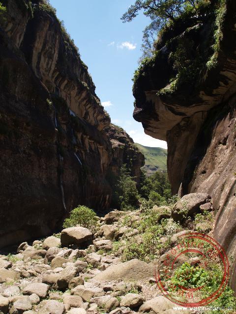 Een wandeling door de kloof in de Drakensbergen