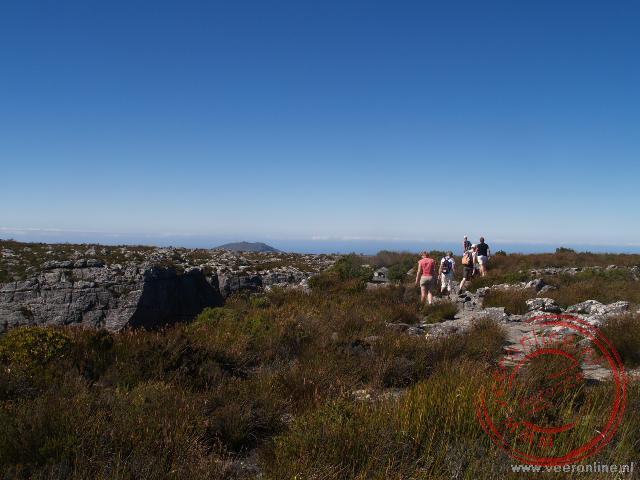 Op de top van de tafelberg in Kaapstad